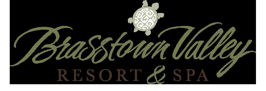 Brasstown-Valley-Brasstown-Valley-Resort-And-Spa