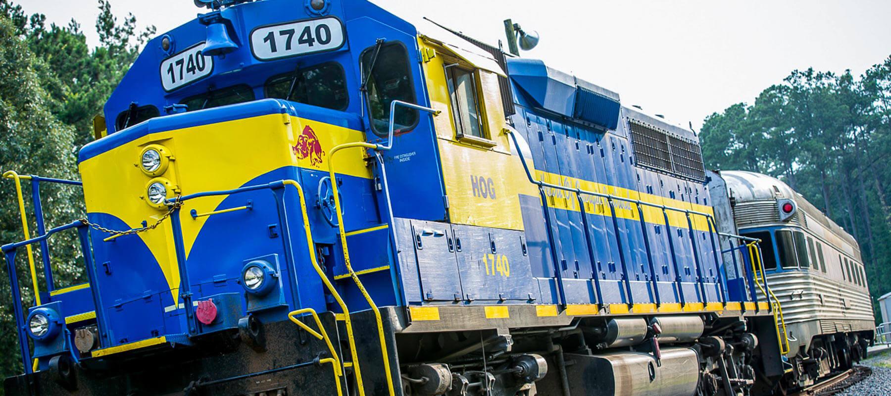 Lake Blackshear GA Veterans Park SAM Shortline Train Slider 6