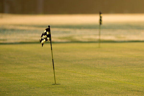 http://www.lakeblackshearresort.com/wp-content/uploads/2014/12/Lake-Blackshear-Golf-Book-Tee-Time.jpg