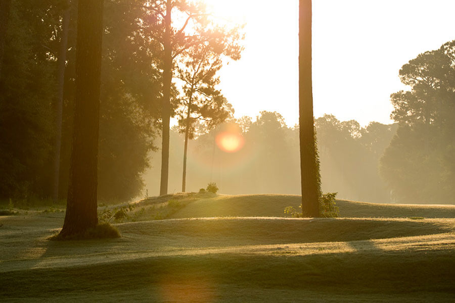 Lake Blackshear Golf Golf Packages All In The Bag Package 2