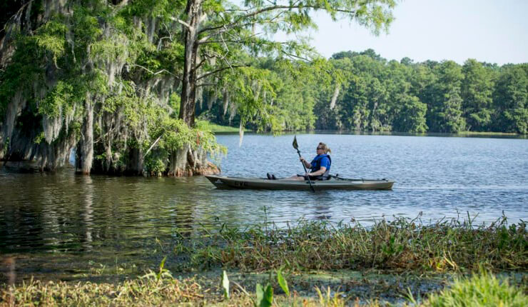 Lake-Blackshear-Georgia-Historic-State-Park-Photos-Videos-Activities-12