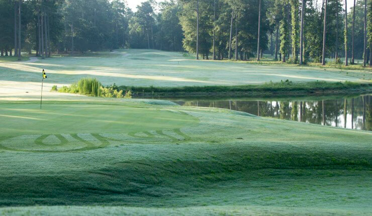 Lake Blackshear Photos Videos Golf 13