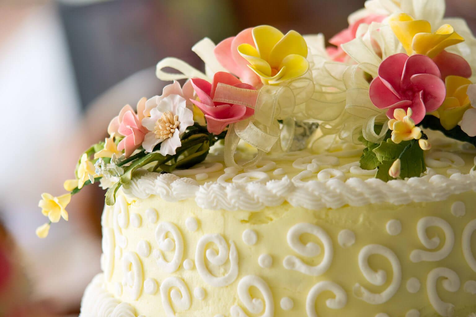 Lake Blackshear ResortLake-Blackshear-Weddings-Wedding-Packages ...