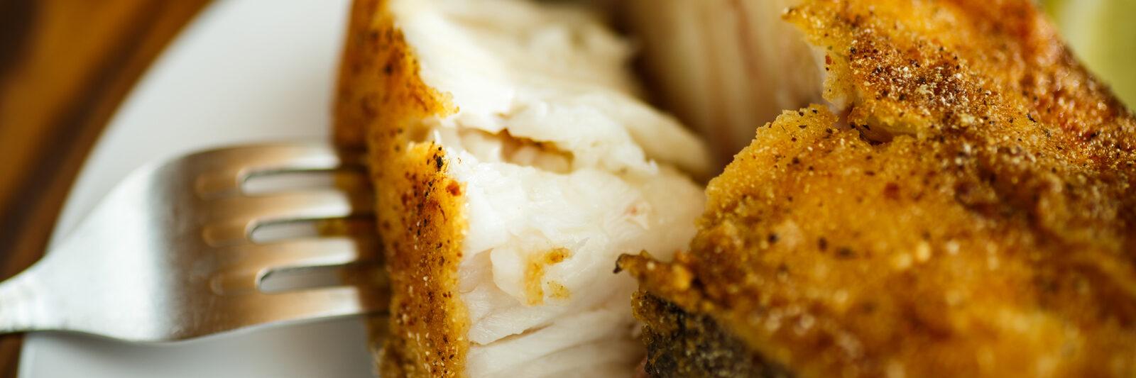 Lake Blackshear Header Fried Catfish Seafood Buffet